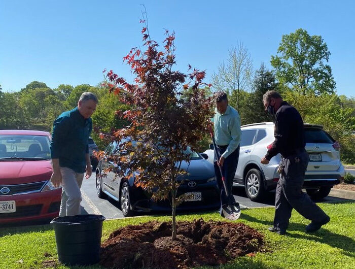 Hooker Furnishings' Arbor Day celebration honors its strong business roots – by planting new ones